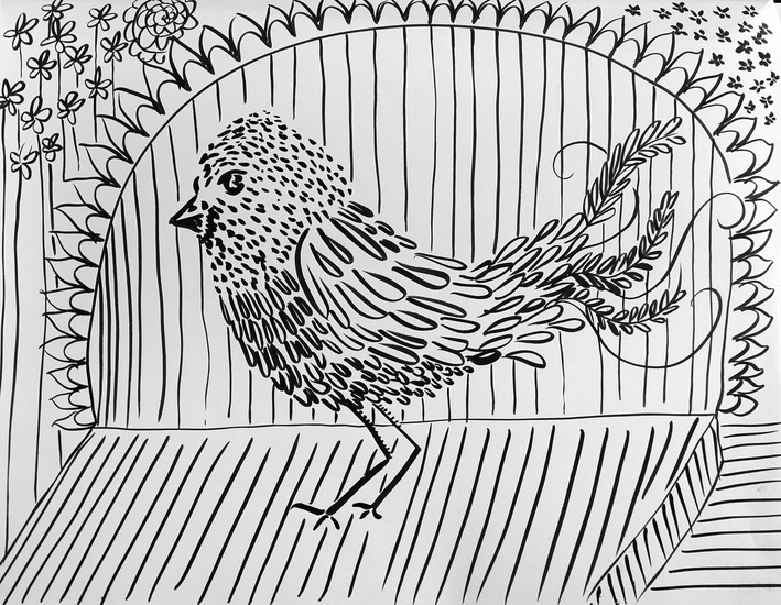 Drawing Birds and Cages II