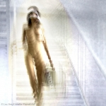 Nude descending a staircase 5