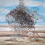 'Starlings swarm'