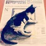 Can't read the newspaper today
