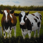 Two Red Holstein calves