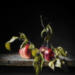 Apple Trio in dark spheres