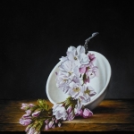 Prunus blossom in bowl