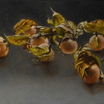 Twig with medlar