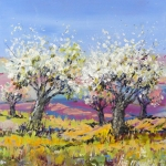 Apple trees in a yellow field