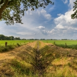 Fields of Drenthe