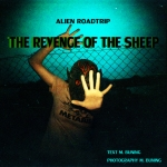 REVENGE OF THE SHEEP