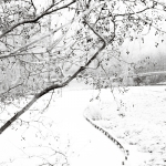 Winterlandschap IV