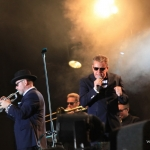 Madness, Night at the Park 2014