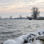 Maas winter