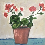 Geranium in een pot