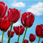 Red tulips in the blue sky