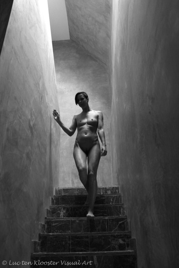 Nude descending a staircase 6