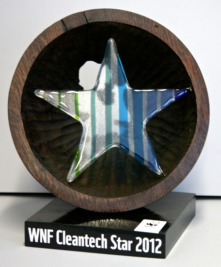 Award WNF Cleantech Star 2012