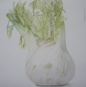 Colored pencil-drawings of vegetables, fruit and (sometimes) candy.