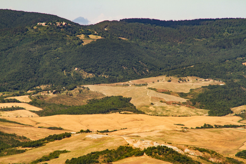 Golden fields of Toscany