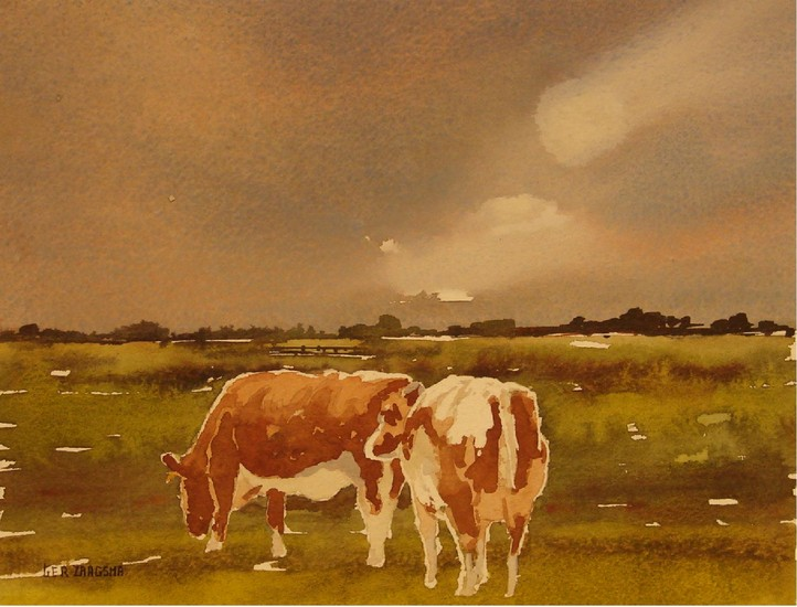 2 Red and white cows
