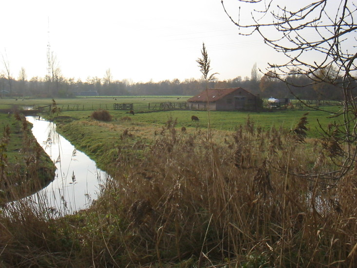 Overveerpolder -20a