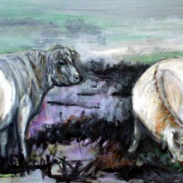 'COWS IN WINTER'