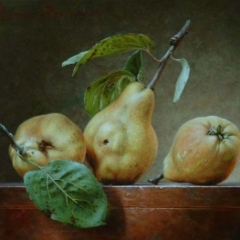 Still life with 3 quinces