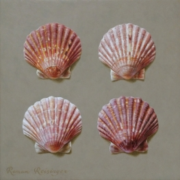 Still life with 4 scallops
