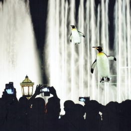 Penguins on stage