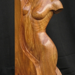 Wood nymph I