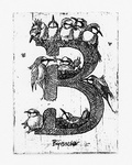 To illustrate the Explanatory and etymological dictionary of Dutch birdnames, Dirk Moerbeek made 26 etchings, depicting a bird alphabet.