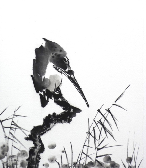 Kingfisher/branch