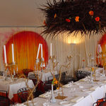 Partystyling/decoratie voor Events