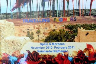 Travelling Flowers '11