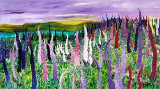 Field with lupines