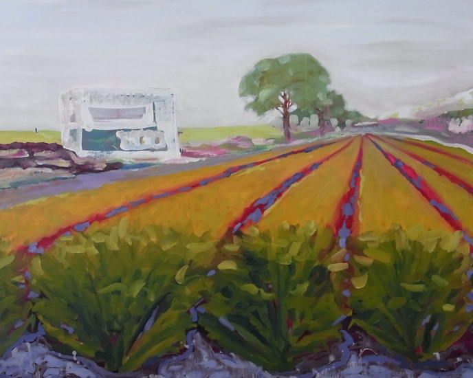 Hockney Fields