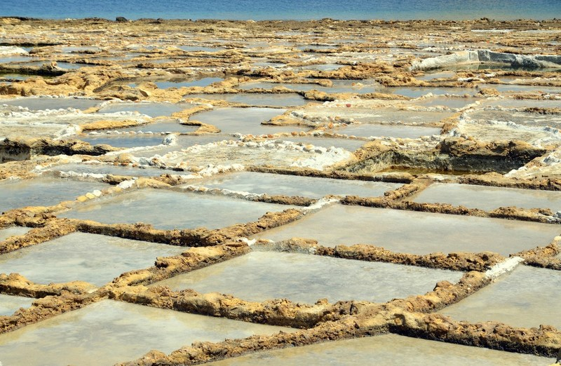 salt pans in Gozo (2)