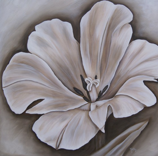 Tulp in Brown & White - Sepia