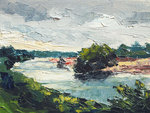 Small landscapes from the river Maas in the Netherlands
