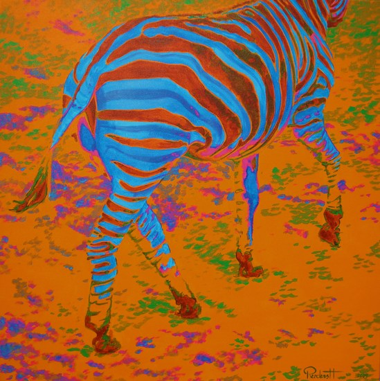 Disappearing zebra