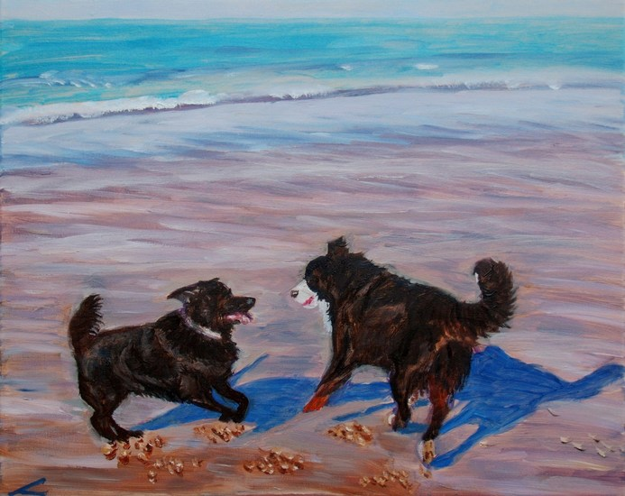 Dogs at the sea