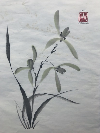Chinese Orchid