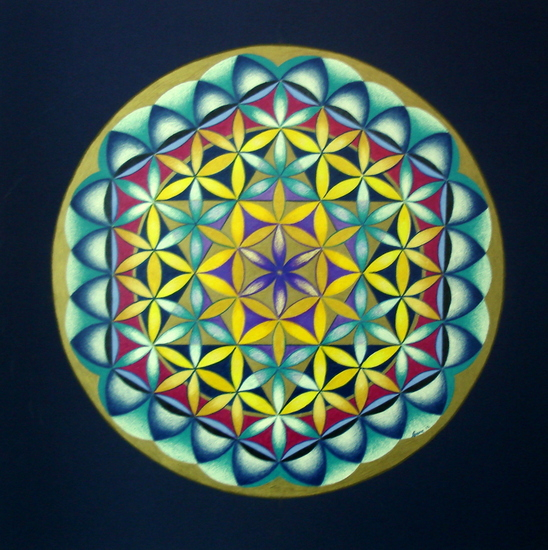 Variatie op de Flower of life