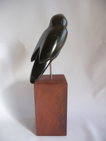 Vogel: Black Bird