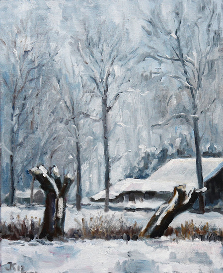 Dutch winterlandscape