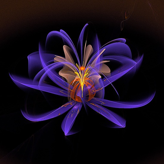gaussian_blur flower