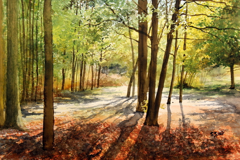Begin oktober in het bos