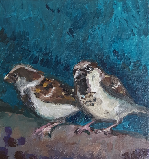 Two blue sparrows
