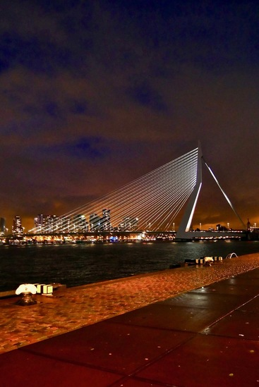 Erasmus Bridge by night Rotterdam