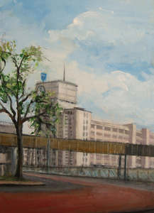 Realistic work,-project about Eindhoven 2012  the place where I was born and grew up