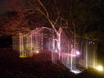 Light installation, especially in trees. Mostly made for night walks, so far, but also for festivals, as a decore for live music and dance, even in the US. Also surprising shadow images.