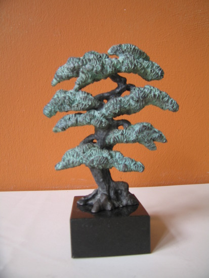 Bonsai boompje